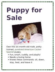 Lab 1-2 Puppy for Sale Flyer.docx