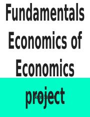 THe Fundamentals Economics of Economics project.pptx