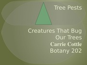 carriecottleCGS2167-week11Lab2-2TreePests