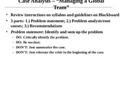 Case Analysis_Managing a Global Team (1)