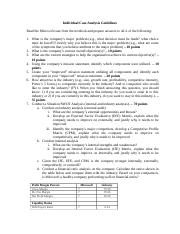 Individual Case Analysis Guidelines(5) (2).docx