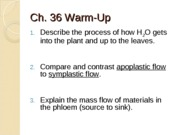 Chapter 36 Transport Vascular Plants