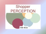 Shopper PERCEPTION