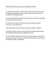 ANAT20006 Practice Exam Questions Self Made Extra Pt1.pdf