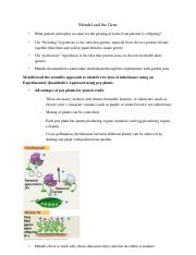 Mendel and the Gene bio 2000 lecture11(1)