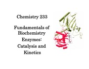 Chapter_11_Catalysis