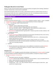 Microbiology Bacteria Notes.docx