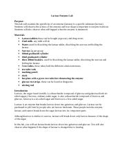 Lactase Enzyme Lab Data Sheet Glucose Test Results Type of ...
