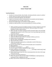 Chapter 4 study guide (Lesson 3) (1).docx