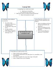 science project butterfly.docx