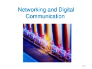 6 - Networks