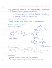 Chem 3393 Reactions with AminoAcids