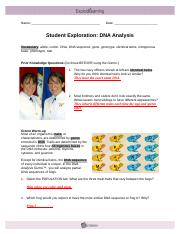 Student Exploration- DNA Analysis (ANSWER KEY).docx ...