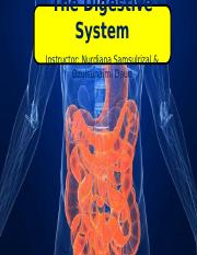 Chapter 3.8 The Digestive System