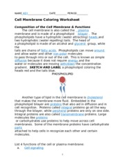 Printables Cell Membrane Coloring Worksheet key cell membrane and tonicity worksheet name answer 6 pages coloring key