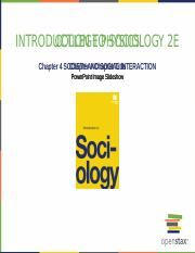 Chapter 4 - Social Structure.pptx
