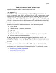 Mediation_Memorandum_Instructions