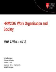 HRM2007 Week 3 what is Work1