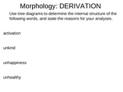 morphology 3