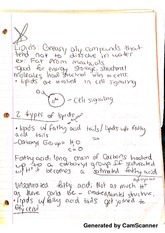 Concepts in Bio Class Notes 8