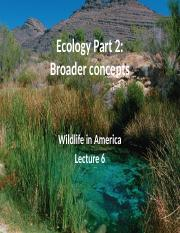 L6 Ecology - broader concepts notes.pptx