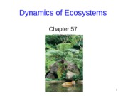 EcosystemsLect3-1
