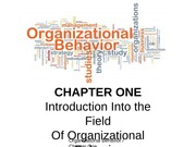 CHAPTER ONE PPT SLIDES