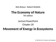 ricklefs_lecture_ppt_ch20