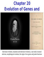Chapter 20 Evolution of Genes and Traits.ppt
