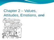 Chapter 2 – Values, Attitudes, Emotions 2 (1)