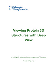 Deep View Course Manual