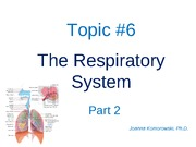ANP 1105 The respiratory system, part 2  2011  JK