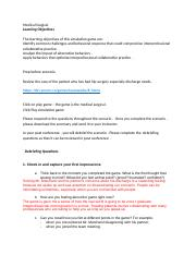 student debrief assignment & instructions .docx