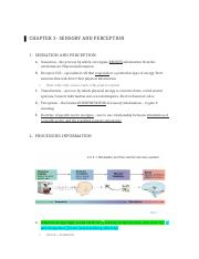 Chapter 3 Sensory and Perception