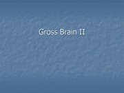2010_Gross_Brain_II