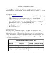 Electronic Assignments.pdf