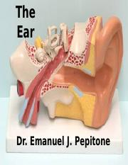 Chapter 11 The Ear Anatomy and Physiology of Hearing and Balance