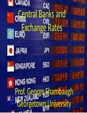 Class 10- Exchange Rates- Central Bankers