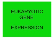 EUKARYOTIC+GENE+EXPRESSION+&+DNA+TECHNOLOGY