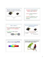 Evol 03 - Mechanisms of evolution Genotype frequencies will not ...