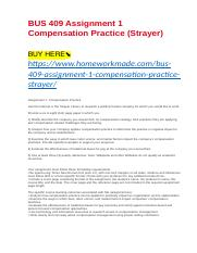 BUS 409 Assignment 1 Compensation Practice (Strayer).docx