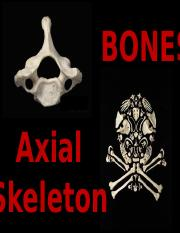 Axial Skeleton (2016).ppt