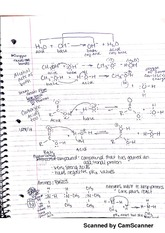 Protonated Compound notes