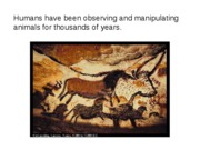 2. History of animal behavior