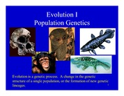Lecture Notes Population Genetics