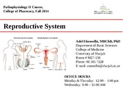 UOS. Pharm. Repro lecture_Fall 2014