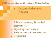 Lecture 10-Cortisol and the Stress Response