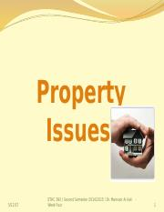 Chapter 4 - Property Issues - updated