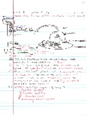 Lec_7 Muscle III Notes