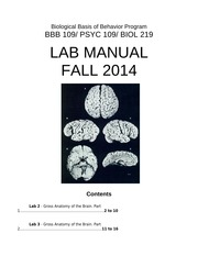 Brain Dissection Manual mk2014